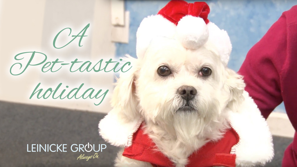 Leinicke Group Holiday Video